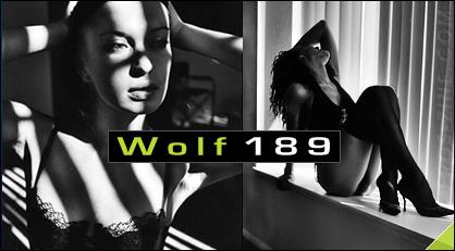 wolf189-lead.jpg